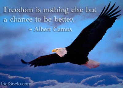 Freedom is nothing else but a chance to be better
