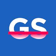 Preview gs logo